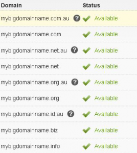 Photo of domain registration scren